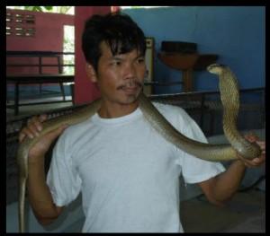 snake farmer