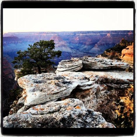 grand canyon john fedro