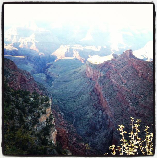 canyon john fedro